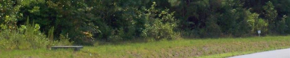 Lot 57 Eagle Trace